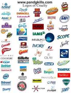 Some Company's  That use Animal Testing