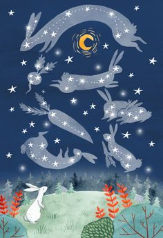 Bunny Stargazing by Julianna Swaney Rabbit Art, Bunny Art, Funny Bunnies, Moon Art, Pretty Art, Stargazing, Hare, Illustrators, Art For Kids