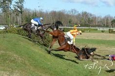 course cheval     Une centaine de chevaux en course 30/04/2013 ladepeche.fr