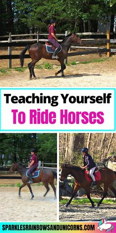 So you are thinking about learning how to ride a horse, by learning to ride DIY style in other words on your own. Maybe you just want to learn on your own, or you have a horse to ride but can't... Click the link to read the rest of the post!#learntoridehorses #learningtohorsebackride #beginnerequestrian #horseriding #horsebackriding #beginnerhorserider #horsebackridingtips #horseridingtips #learningtoridehorses Horseback Riding Tips, Horse Riding Tips, Equestrian, Rest, Horses, Teaching, Link, Animals, Style