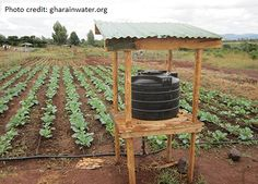 Thirty-five Water Conservation Methods for Agriculture, Farming, and Gardening. Part 1.   Big Picture Agriculture
