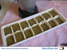 Kale Apple Carrot Cavy Snack