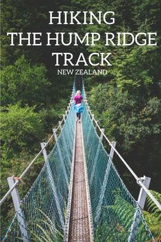 Like the idea of hiking from sea level to on day one alone? Then the Hump Ridge Track in New Zealand is calling for you, a 3 day hike that take you through New Zealand's Fiordland National Park. New Zealand Itinerary, New Zealand Travel, Visit Australia, Australia Travel, Parc National, National Parks, New Zealand Adventure, Hiking Tips, Backpacking Tips