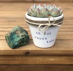 succulent planter succs funny sake gift for pot pun oh Oh for Succs Sake succulent pot planter pun funny giftYou can find Flower pots and more on our website Succulent Pots, Succulents Garden, Planting Flowers, Succulents Drawing, Indoor Succulents, Propagating Succulents, Succulents Painting, Succulent Containers, Container Flowers
