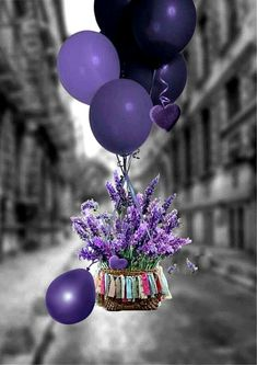 Purple balloons and flowers, oh my Birthday Wishes And Images, Best Birthday Quotes, Birthday Wishes Cards, Happy Birthday Messages, Wishes Images, Happy Birthday Greetings, Birthday Pictures, Birthday Blessings, Purple Balloons