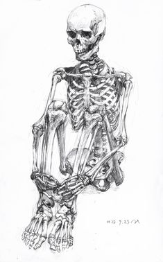 in these bodies we will live. in these bodies we will die. where you invest your love, you invest your life. - mumford and sons, awake my soul Anatomy Drawing, Anatomy Art, Human Anatomy, Anatomy Tattoo, Skeleton Drawings, Skeleton Art, Funny Skeleton, Skeleton Makeup, Skull Makeup