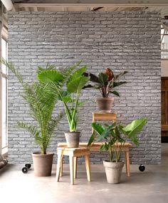 Piet Hein Eek and NLXL's wallpaper collection creates a tromp l'oeil effect – appearing as three-dimensional images but on a flat surface.