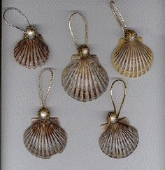 spray silver or gold .After you Summer Vacation at the Beach, here's a great project the kid's can enjoy, too! Seashell Crafts for Kids and Adults. Seashell Christmas Ornaments, Beach Christmas, Coastal Christmas, Angel Ornaments, Snowman Ornaments, Christmas Tree, Seashell Art, Seashell Crafts, Beach Crafts