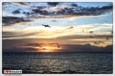 Breathtaking memories enjoying the sunset at Bonaire. The tranquility and its nature which has brought back fond holiday memories for generations of visitors. Take your moment back home I love Bonaire available at http://store.ilovebon.com/ or call our local agent.