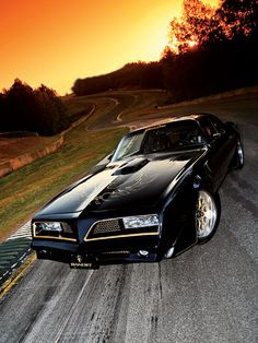 Year One Pro Touring Bandit Trans AM - my dream car when I was a senior in high school! It's still a beauty!