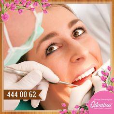 Ofrecemos a nuestros pacientes en especial al adulto mayor odontología de calidad y máxima garantía. Para mayor información ingresa a nuestra página web www.odontoss.com. Teléfono: 444 00 62 whatsapp: 3122284241.