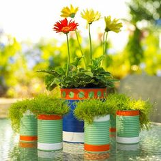 3 tin can planters - cute I say.