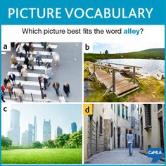 The answer is D. An alley is a narrow passageway between buildings. As you can see in the picture D, the person is walking on a narrow path with buildings on each side. The other pictures, which also show things that can be found in or around a city, don't meet the definition of an alley.
