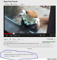 Funny Pictures Of The Day Vol. 116 (35 IMAGES)
