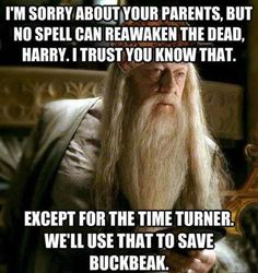 This bugs me.. Because if his larents were saved, Voldemort probably would be too.. if he couldnt get past james, he would have fled... I apologize for my geek