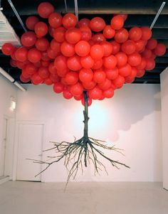 balloon tree -- head in the clouds, roots to the ground