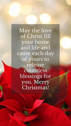 Simple quotes for Christmas cards for families and friends. May the love of Christ fill your home and life and cause each day of yours to release countless blessings for you. Merry Christmas! #quotesforchristmascards #merrychristmasquotesforfriends #happychristmasquotes