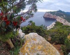 by http://ift.tt/1OJSkeg - Sardegna turismo by italylandscape.com #traveloffers #holiday | #italy #sardegna #alghero #winter #lanuovasardegna #sardegna_super_pics #sardegnaofficial #peaceful #igersassari #igersardegna #landscape_captures #panorama #verso_sud #sky #nature #amazing #sunset #waves #landscape #worldcaptures #sardinia #ilovesardegna #top_italia_photo #panorama #igersitalia #ig_worldclub #start #gopro #hero4 #gopro_boss Foto presente anche su http://ift.tt/1tOf9XD | January 31…