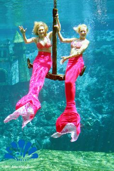 Andrea Canning from ABC News Nightline and Good Morning America with Mermaid Stayce. (2011)