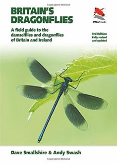 Britain's Dragonflies: A Field Guide to the Damselflies a... https://www.amazon.co.uk/dp/0691161232/ref=cm_sw_r_pi_dp_x_0VSPyb4HTPSN7