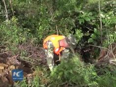 Eight people die in rain-triggered flash flood in south China.