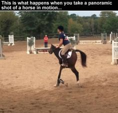 Panoramic photo is fun.This is what happens when you take a panoramic shot of a horse in motion...