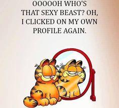 Garfield dating stein