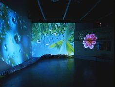 Artville artist of the day: Pipilotti Rist  Title: Herbstzeitlose (Saffron Flower or Fall Time Less) Year: 2004 Size: Dimensions variable Medium: Installations, Video/Film, video/audio installation, 4 projectors, 4 DVD players, 2 sound systems, part of a wooden house, branch from a maple tree, backlit panorama (photo print on Plexiglass), table and 3 chairs. Courtesy: www.artnet.com #artvilleartistoftheday #pipilottirist #installation #art #artville