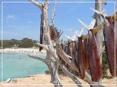 Ferry pour Formentera - Jusqu'à 36% de remise - Meilleurs tarifs - To-ibiza.com