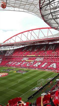 A Minha Chama: 2016-2017 33ªJ: SL Benfica 5 V. Guimarães 0 - TETRA CAMPEÔES