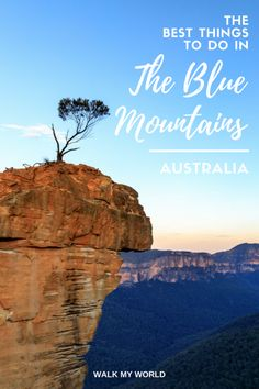We love the Blue Mountains, It's in our top 5 places that everyone visiting Australia should see. So check out our guide to the best things to do in this amazing area.