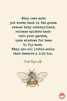 My favorite words! - My favorite words! Great Quotes, Me Quotes, Inspirational Quotes, Family Quotes, Wall E, The Words, Favorite Words, Favorite Quotes, Save The Bees