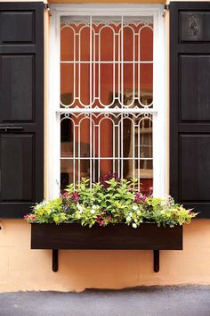 Container Gardens: Small Window Box with Greenery