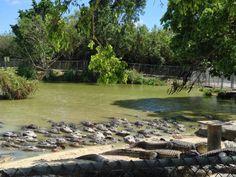 Everglades Alligator Farm, Florida