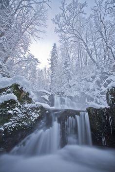 Winter dream by Emanuel Sutterlüty*--Austria