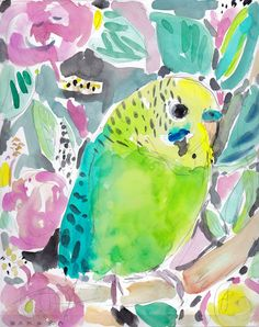 Disco the Parakeet 8×10 | Barbarian by Barbra Ignatiev #watercolor #budgie #parakeet