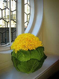 Savoy cabbage and daffodil arrangement by Ken Marten.