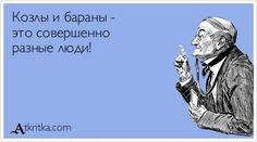 1353918262_atkritka_29.jpg (600×335)