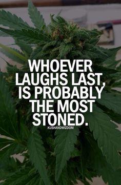 indeed indeed :D Marijuana Seeds Canada | Mary Jane's Garden www.maryjanesgarden.com