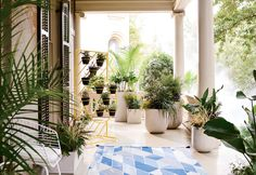 Here& Your First Look at West Elm& Summer Collection: gallery image 10 Outdoor Balcony, Balcony Garden, Outdoor Rugs, Outdoor Spaces, Outdoor Living, Outdoor Decor, Balcony Ideas, West Elm, Screen Plants