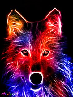 A fractal for a loved friend. Because i believe he has the quiet strength, and loyalty of a wolf. The Quiet Strength of a Wolf Tier Wallpaper, Wolf Wallpaper, Animal Wallpaper, Colorful Wallpaper, Wallpaper Awesome, Cool Pictures For Wallpaper, Beautiful Wallpaper, Purple Wallpaper, Desktop Pictures