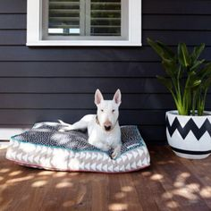 Best Pet Beds For Your Dog Or Cat That Are Cute. pooccio This brand of luxury floor cushions will fit right into any bohemian household—just make sure your guests know it's for your dog, not humans.