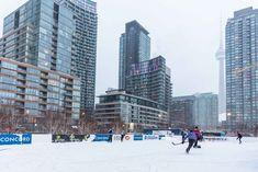 Toronto Views's albums Visit Toronto, Downtown Toronto, Toronto Winter, Outdoor Skating, International Airport, Ice Skating, Cn Tower, Ontario, Skate