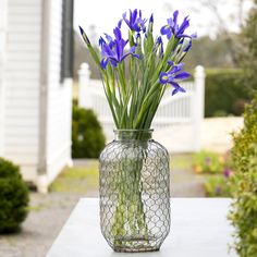 Yup. It's a pickle jar wrapped in chicken wire.  And it's beautiful! http://shop.pallensmith.com/farmhouse-kitchen/poultry-wire-wrapped-pickle-jar/