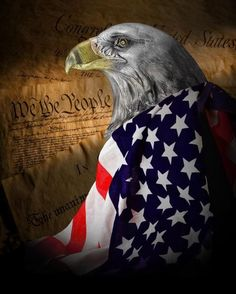 We The People Art Print by Tom Mc Nemar. All prints are professionally printed, packaged, and shipped within 3 - 4 business days. Choose from multiple sizes and hundreds of frame and mat options. American Freedom, American Pride, American History, American Spirit, American Flag Eagle, American Art, I Love America, God Bless America, Fine Art America