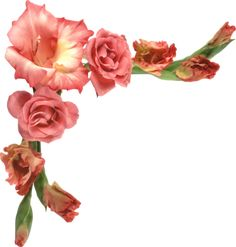 """Photo from album """"Цветочные уголки"""" on Yandex. Boquet, Gladiolus, My Flower, Pink Flowers, Picture Frames, Diy And Crafts, Floral Wreath, Clip Art, Pictures"""