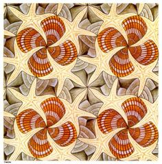 Shells and Starfish, MC Escher Mc Escher, Escher Kunst, Escher Art, Magritte, Tesselations, Dutch Artists, Claude Monet, The Artist, Gravure