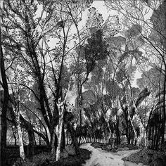 Due Stradet / Two Roads, 1982, Federica Galli. Italian 1932 - 2009) - Etching on Zinc - (Source:  editaliarte.it  )