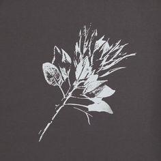 King Protea – White on Grey Protea Art, Protea Flower, Gate Designs Modern, Leave Pattern, Flower Shop Design, Diy Screen Printing, Nature Sketch, Wedding Illustration, Flower Artwork