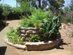 "This is a large spiral garden, in a ""trickle-down"" effect, water drains down into the lower levels, leaving the arid-loving plants high and dry, while the middle and lower levels stay progressively more moist."